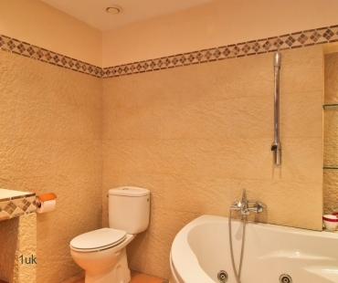 Master bathroom with jacuzzi bath and toilet