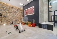 Gym area with gym equipment
